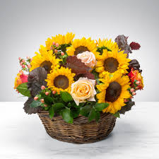 bloom basket