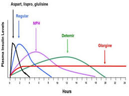 Insulin Time Action Chart Insulin22