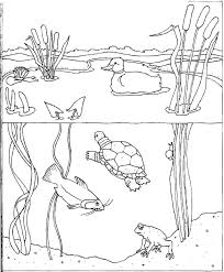 Coloring Pages Of The Water For Kids With Water Coloring Pages Water