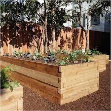 best wood for raised garden beds. Best Lumber For Raised Garden Beds Of Diy Cedar Wood