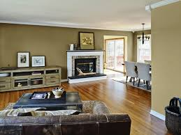 Nice Color For Living Room Best Paint Colors Living Room Living Room Color Schemes Color