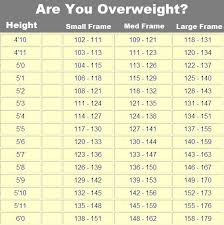 Boca Raton Body Composition Body Composition Test