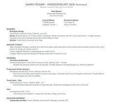 Undergraduate Student Resume Gorgeous Undergraduate Resume Template Doc Undergraduate Student Resume