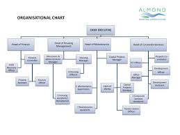 Singapore Power Organisation Chart Ppt Organisational Chart Powerpoint Presentation Free