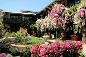 vallarta botanical garden is the 4 favorite in usa today poll