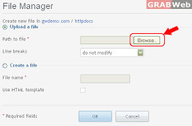 3) Plesk 11 : How to use the file manager - Knowledgebase - GRABWeb