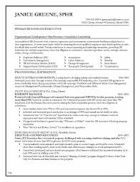 Artsy Resume Templates Best Of Resume Beautiful Resume Basic ...