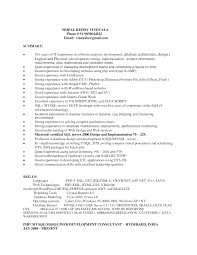 Useful Net Developer Resume Summary About Resume Summary Examples