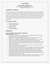 Professional Resume Layout Professional Resume Layout Beautiful Robert Half Resume Template 19