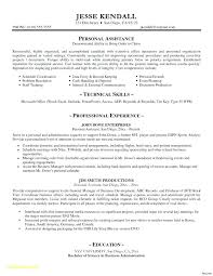 Executive Resume Templates Word Stunning Examples Of Marketing Executive Resumes Resume Template Word