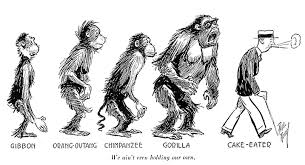 wireless essays so there appears to be a case for associating our modern evolutionary sequence cartoon the earlier controversy surrounding the scopes trial