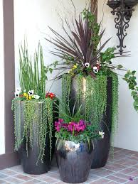 best outdoor potted plants full sun ideas for container gardening container planting container gardening gardens and