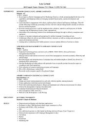Campaign Consultant Resume Samples Velvet Jobs