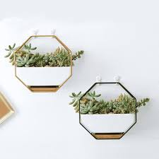 wall hanging planters for