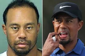Tiger Woods arrogant during DUI arrest in Florida New York Post