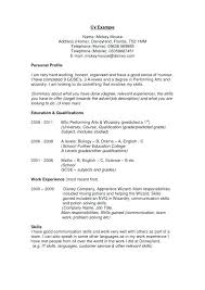 Examples Of A Summary For A Resume Personal Profile Resume Es Nice ...