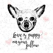 Love Is A Puppy On Your Pillow Drawn Card And Lettering Calligraphy Motivational Quote For Dog Lovers And Typographic Design Cute Friendly Smiling