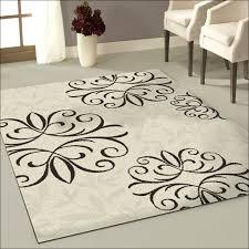 9 x 12 rugs target