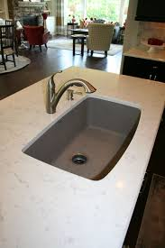 Pros Cons Undermount Lowes Nirali And Double Divider Sinks Kitchen