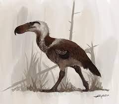 Terror Birds: Flightlessness Made Terrifying - Darwin's Door