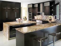 Modern Black Kitchen Cabinets Custom Black Kitchen Cabinets Roy Home Design