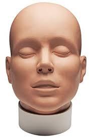 mehron makeup practice head face