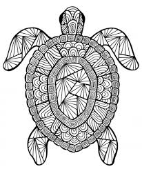 Adult Difficult Coloring Pages Of Turtle Printable Animal Coloring