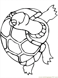 turtle coloring pages 11 coloring page