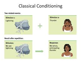 Example Of Classical Conditioning Classical Conditioning Ppt Video Online Download