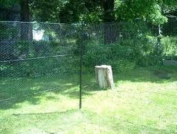 electric deer fence image posts20