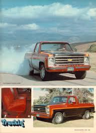 1979 Chevy Big 10 | Sqaurebodies | Pinterest | Chevy, Gm trucks ...