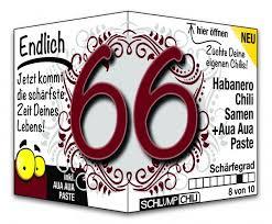 Endlich 66 Jahre Geschenk Witzige Geschenkideen Zum Geburtstag