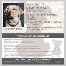 emotional support dog letter singular id card service dog
