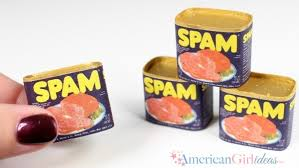 diy american girl doll food spam