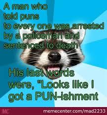 Lame Pun Coon #3 by mad2233 - Meme Center via Relatably.com