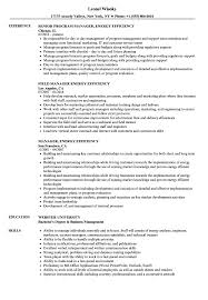 Landman Resume Manager Energy Efficiency Samples Velvet Jobs Sample ...