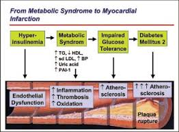 Metabolisches syndrom definition