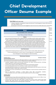 You'll find a variety of free resume samples and examples right here. 200 Resume Examples For Every Job Industry 2021 Zipjob
