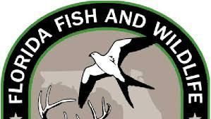 Fish Wildlife Commission Florida Seeks And Employment Opportunity p40FEE