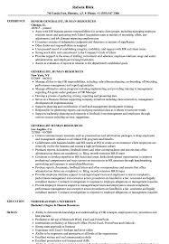 Human Resources Resumes Generalist Human Resources Resume Samples Velvet Jobs