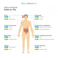 Difference Between Cold And Flu Chart Cold Or Flu What Are The Differences