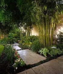 awesome bamboo garden design ideas patio landscape amazing garden lighting flower