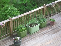 Back Porch Garden