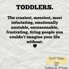 Toddler Quotes Enchanting Toddler Jokes Only Parents Will Understand Kids Pinterest