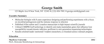 Resume Summary Examples Science Jobsxs Com
