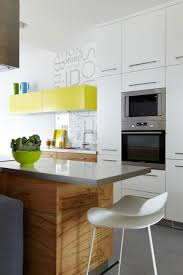 Small Apartment Kitchen Ideas Noticeable Green Cabinet ...