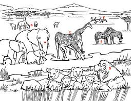 Small Picture South African Wild Animals Coloring PagesAfricanPrintable