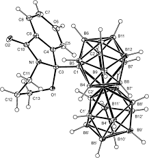 The synthesis and structural characterization of polycyclic derivatives of cobalt bis dicarbollide 1