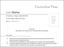 Amazing Cv Templates That Impress