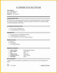 Resume Cv Format Download Awesome Cv Template South Africa Resume Cv